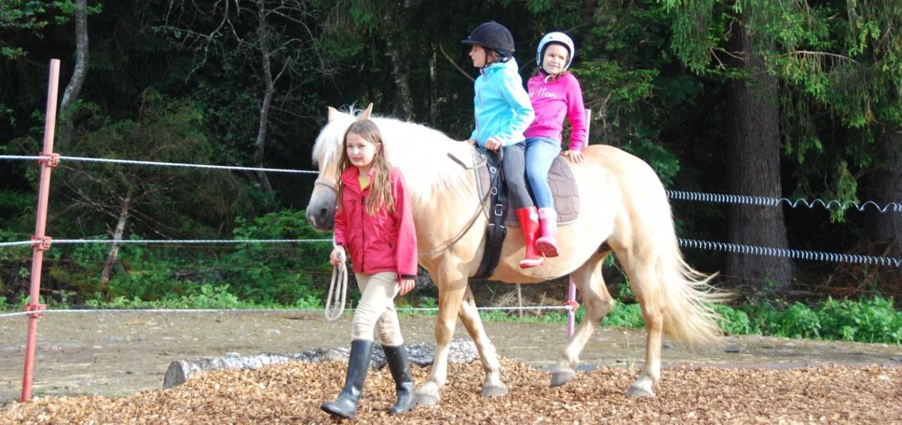 schnuppern Kind führt Pferd